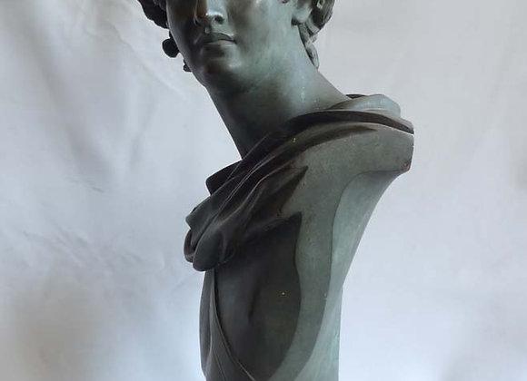 Antique Grand tour bronze bust of the Apollo Belvedere