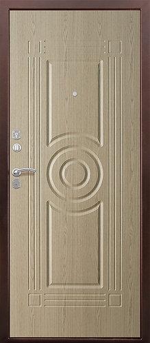 Дверь металлическая 101