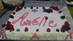 Le nostre torte  15