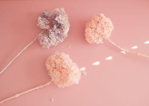 The dried flower bar-6.jpg