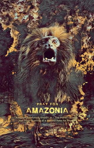 save amazon-01.jpg
