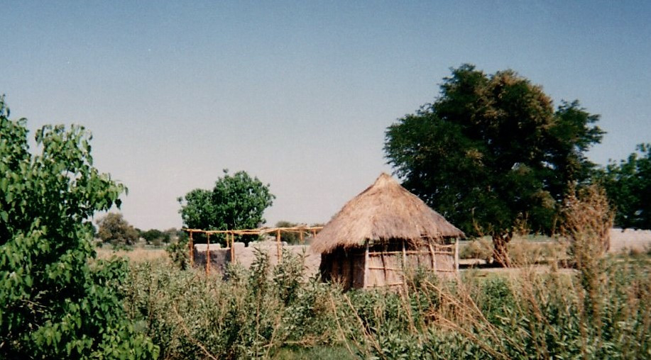 29 Maun Okawango