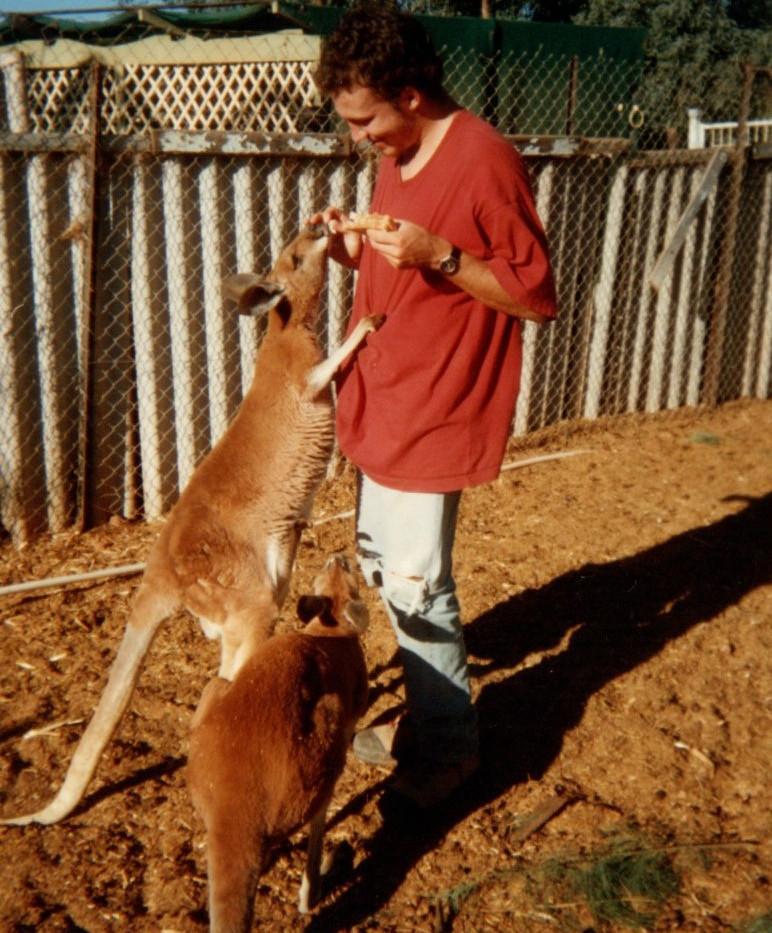 12 Kangourous de Doris et Danny