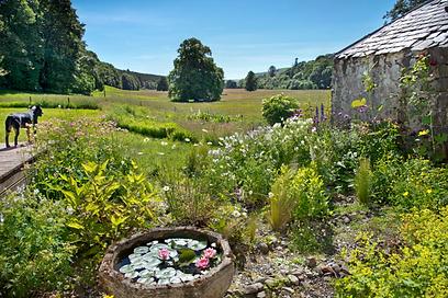 Alton Albany Farm