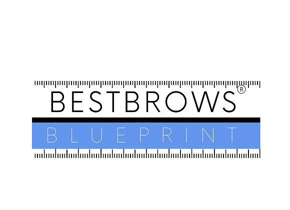 Special price BESTBROWS BLUEPRINT Online Brow Mapping Course
