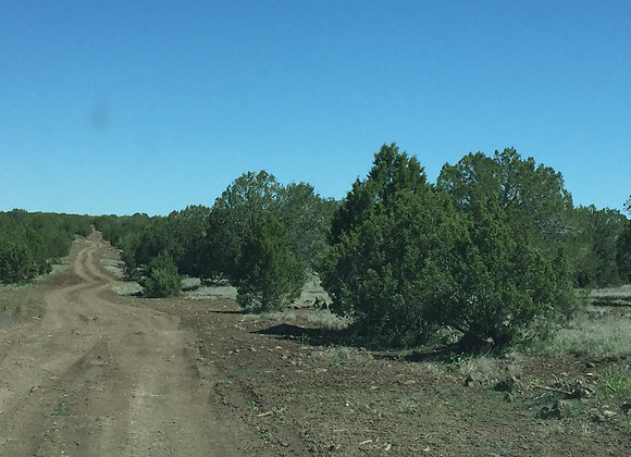 2.25 Acres – Near Ash Fork, AZ - 205-08-048