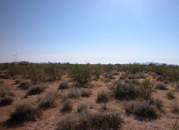 1.07 Acres – Near Dolan Springs, AZ - 328-06-203