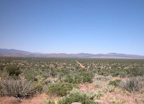 2.50 Acres – Near Chloride, AZ - 340-24-075A