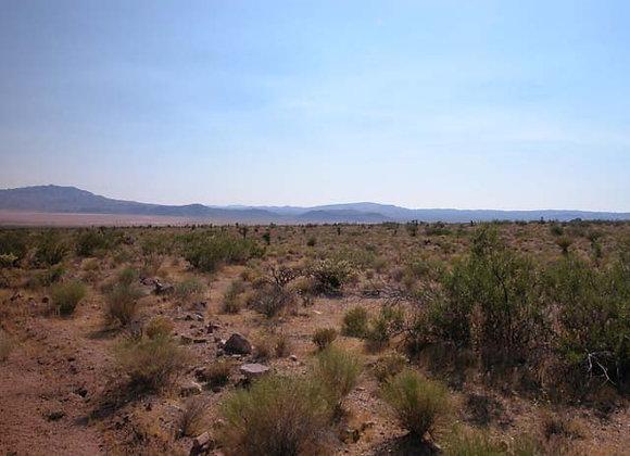 1.25 Acres – Near Dolan Springs, AZ - 326-09-204B