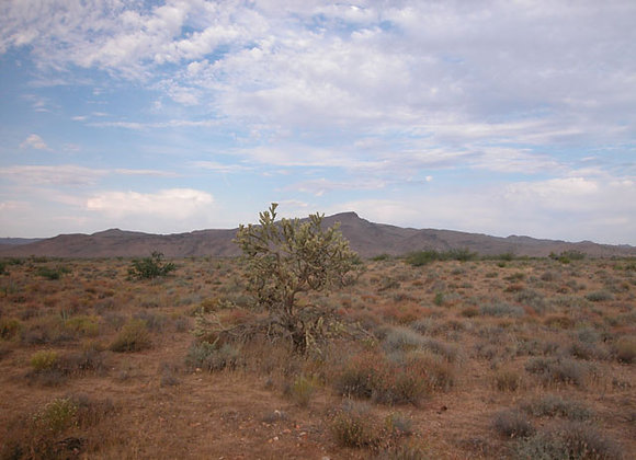 1.81 Acres - Near Chloride, AZ - 340-04-063