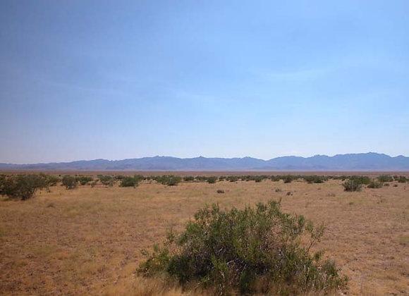 1.00 Acres – Near Dolan Springs, AZ - 319-15-141