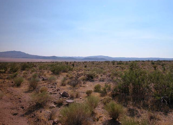 2.07 Acres – Near Ash Fork, AZ - 206-02-019
