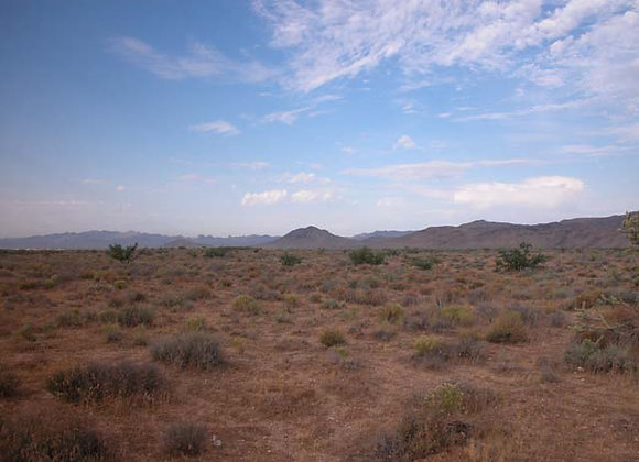 1.25 Acres – Near Dolan Springs, AZ - 316-07-420