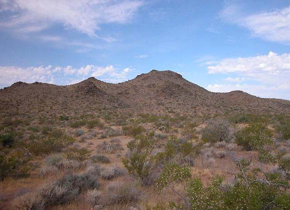 1.00 Acres – Near Dolan Springs, AZ - 316-03-204