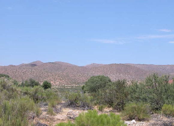 1.50 Acres – Near Dolan Springs, AZ - 319-15-085