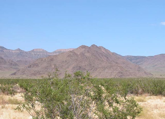 1.00 Acres – Near Dolan Springs, AZ - 316-03-245