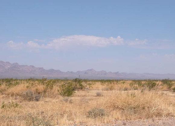 .61 Acres – Near Dolan Springs, AZ - 326-09-014