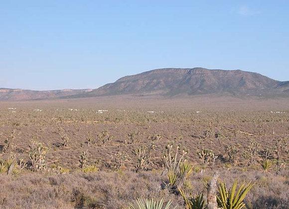 2.50 Acres – Near Dolan Springs, AZ - 326-12-110