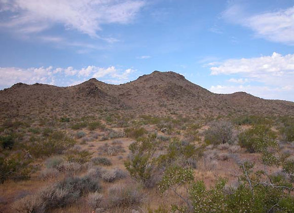 10.27 Acres – Near Dolan Springs, AZ - 319-15-011