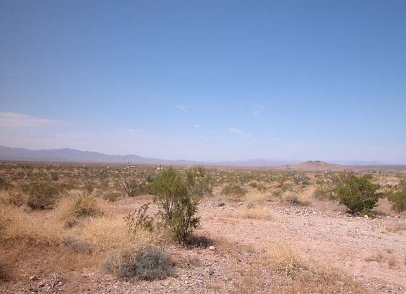 1.25 Acres – Near Dolan Springs, AZ - 326-09-167B