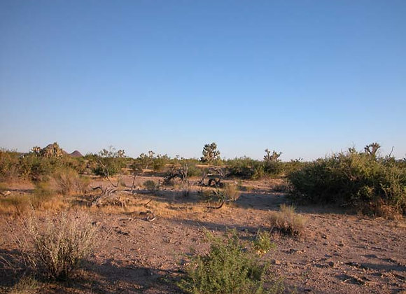 1.97 Acres – Near Dolan Springs, AZ - 328-04-377A