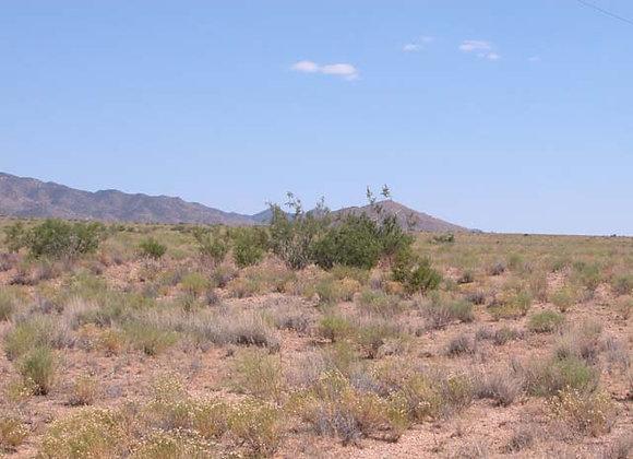 1.25 Acres – Near Dolan Springs, AZ - 326-05-132E