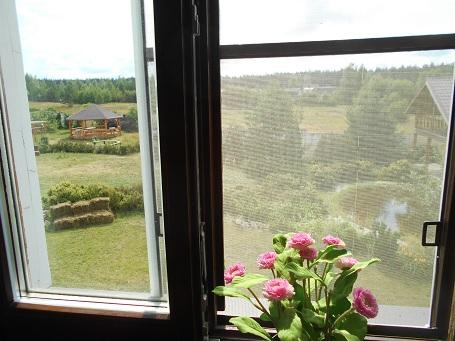гостевой дом вид из окна