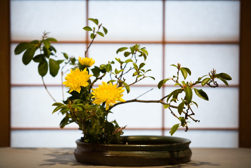 https://static.wixstatic.com/media/829470_0b82c078a517436bb17490ff139fa6c3.jpeg?dn=ikebana.jpeg