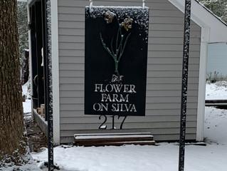 January Dusting at Flower Farm on Silva