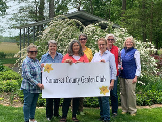 A Wonderful Visit from the Somerset Garden Club to Flower Farm on Silva