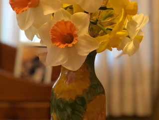Photo from a customer of a vase of Flower Farm Daffodils from bulbs that were planted last fall at t