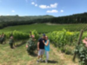 Tuscan Vineyard.JPG