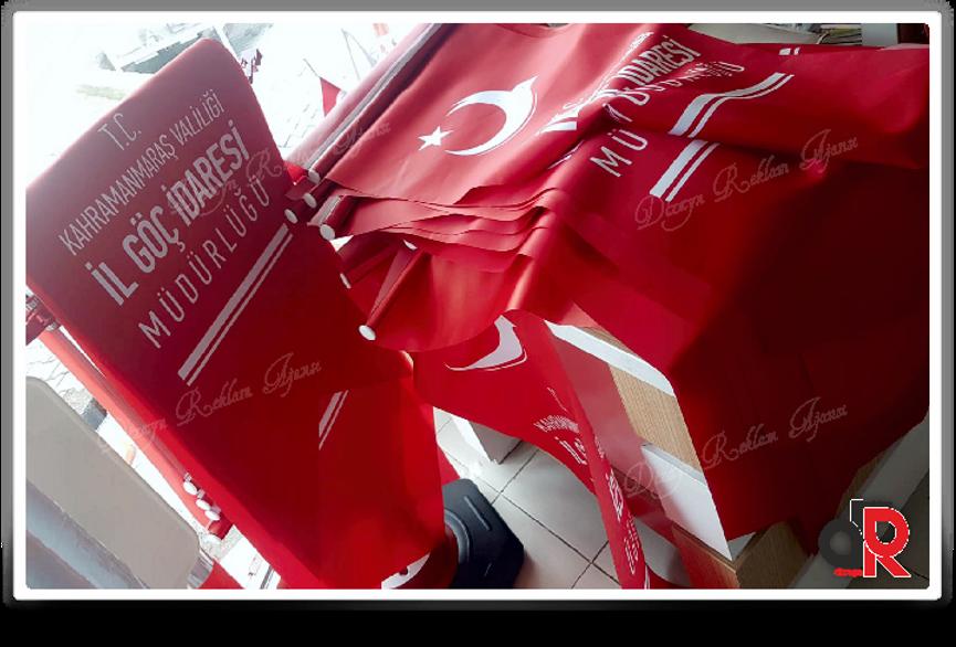 web_2019_yeni_KIRLANGIÇ_BAYRAK_11.png