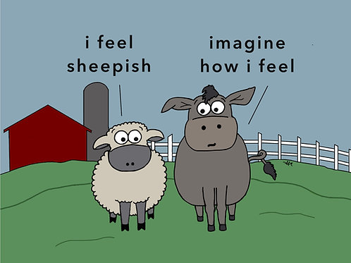 i feel sheepish
