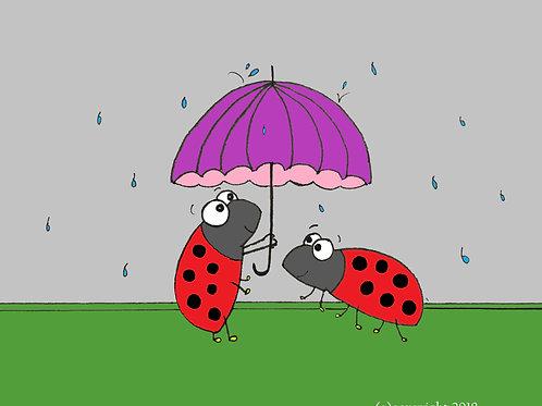 ladybugs in the rain
