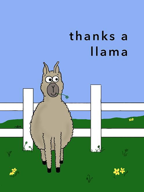 thanks a llama