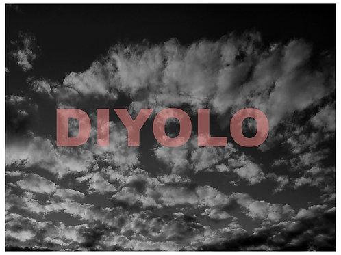 DIYOLO