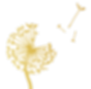Dandelion Logo Small.png