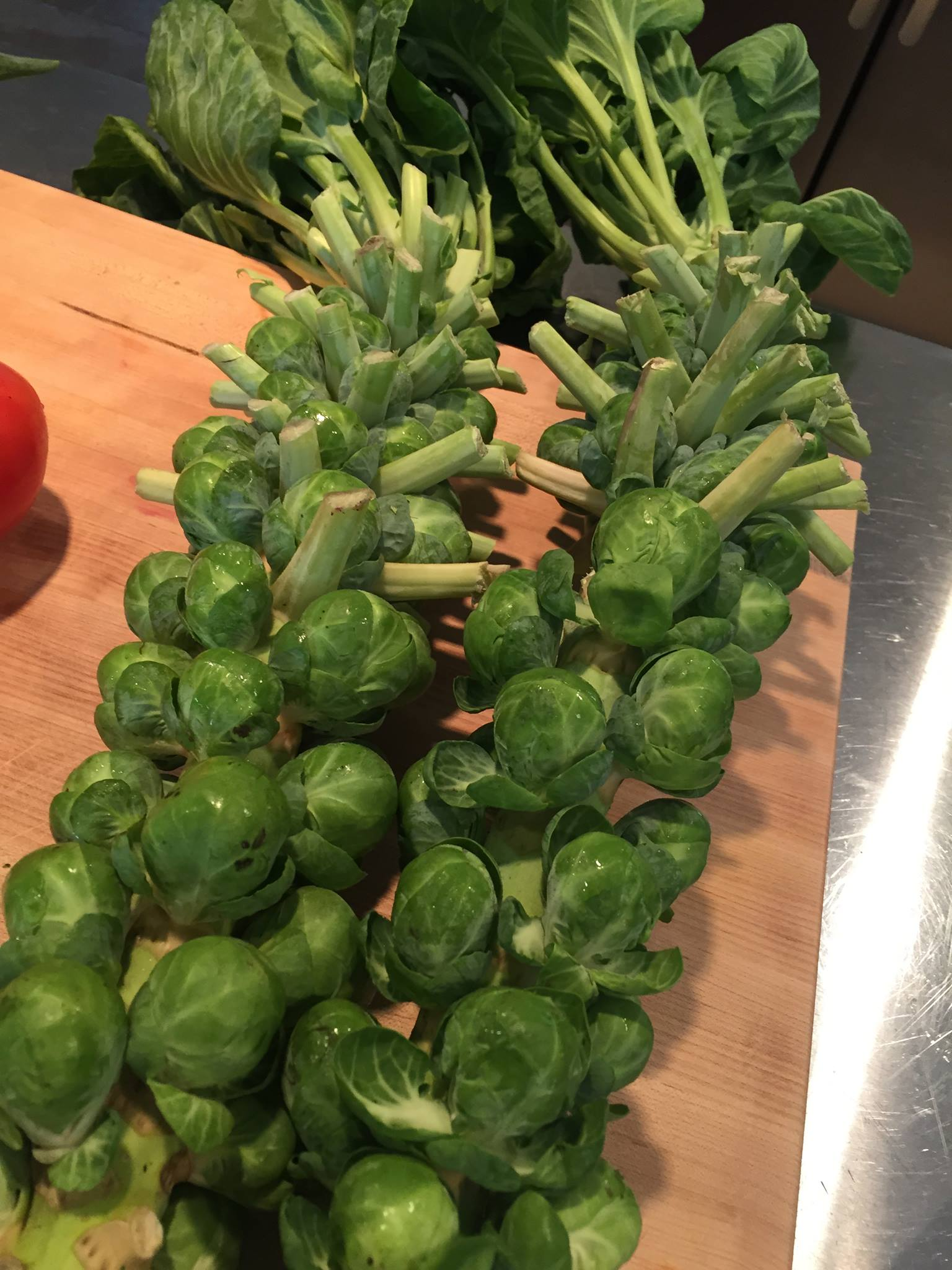 Stalks of Brussel Sprouts