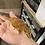 Thumbnail: Orange Blotch - Sub Adult Female