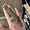 Thumbnail: Poindimie - Juvenile Female PDV Line