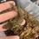 Thumbnail: Goro - Juvenile Male