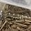 Thumbnail: 1.1 Eurydactylodes Occidentalis - Adult Pair