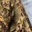 Thumbnail: Troger Mt Koghis - Juvenile Female