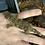 Thumbnail: Mt Humboldt - Juvenile Male