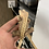 Thumbnail: Yellow Pinstripe - Adult Female