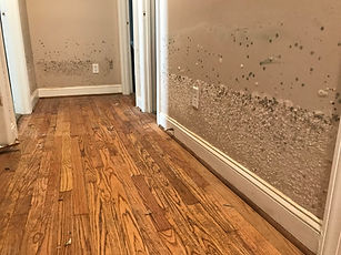 interior-of-a-flood-damaged-home-in-a-re