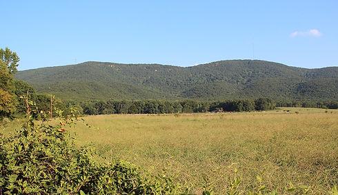 Cherokee County - Pine Log Mountain and