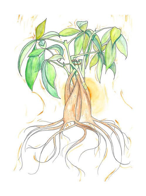 Money Plant 8x10 print