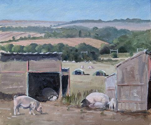 Pigs at Goring.jpg